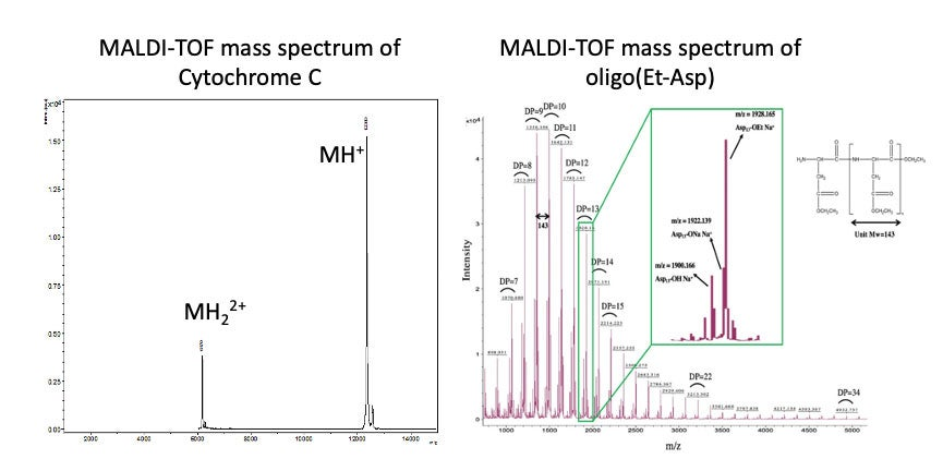 Examples of the Bruker Autoflex mass spectrum results