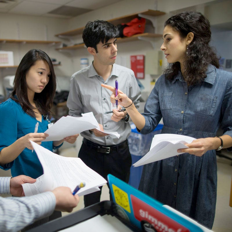 Students work with a doctor at Mount Sinai