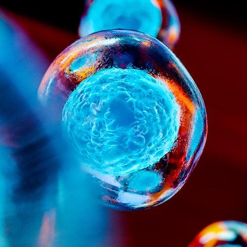 Colorized image of a molecule