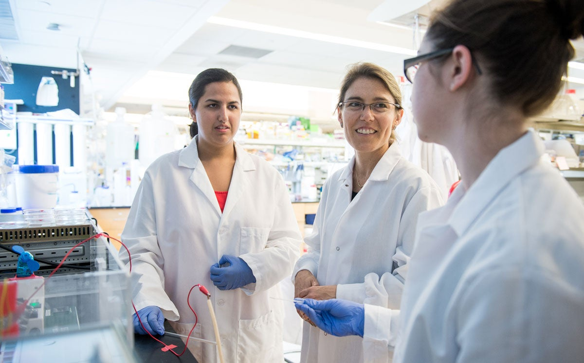 Students in the a lab working with a professor